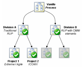 Software Process Customization and the Development Case